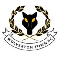 Wolveton Town Badge 1